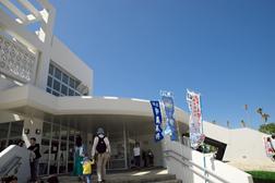 42産業まつり 海洋産業展 奥武山プール開催